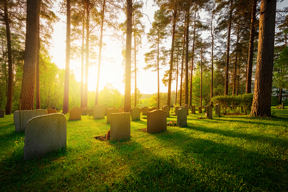 Graveyard in sunset with warm light and feeling and shadows falling from trees and headstones